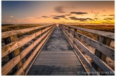 Reader Photo Of The Day - South Cape Boardwalk By Brock Bill