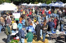 Two Reports Of Illness At Octobers Wellfleet Oyster Festival - We Call Bullshit
