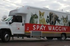 The Spay Waggin' Is Coming To Hyannis