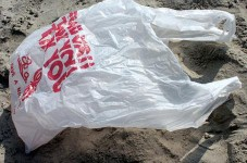 They Did It , Provincetown Banned Plastic Bags - Will The Rest Of The Cape Follow?