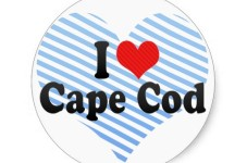 Just A Friendly Reminder About How Great Cape Cod Is